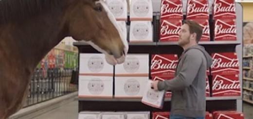Budweiser_Horse_Commercial