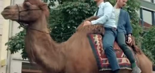 Volkswagen_Passat_GTE_Race_Camel