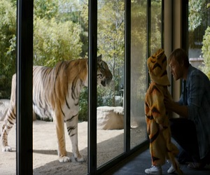 Nissan Commercial Song >> Expedia Tiger Commercial 2016