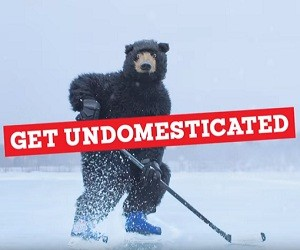 Labatt Blue Beer Commercial – Bear Playing Hockey - Get Undomesticated