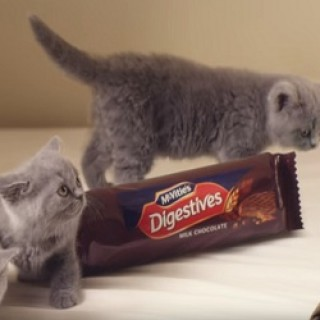 McVitie's_Chocolate_Digestives