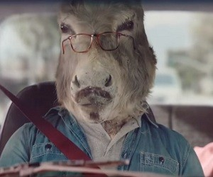 Sheetz Commercial - Donkeys