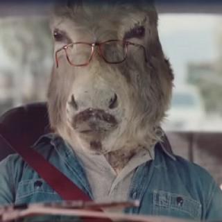Sheetz_Donkeys