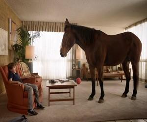 Skippy P.B. Bites Horse Commercial