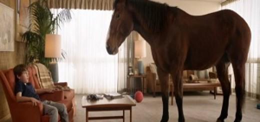 Skippy_PB_Bites_Horse
