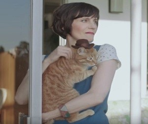 GoDaddy Commercial 2016 - Cats With Hats
