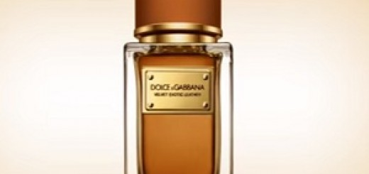 Dolce&Gabbana_Velvet_Leather