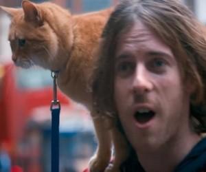 A Street Cat Named Bob (2016 Movie)
