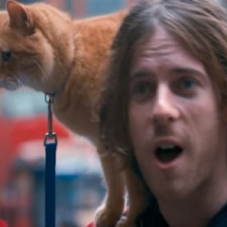 a_street_cat_named_bob_2016