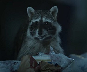 Geico Raccoons Commercial 2016 - It's What You Do