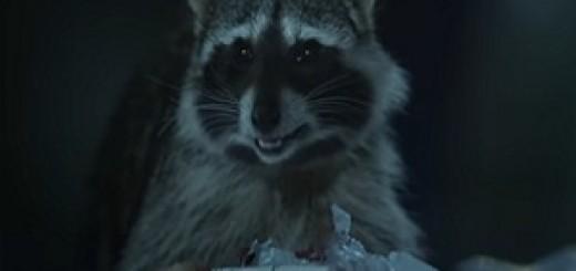 geico_raccoons_garbage