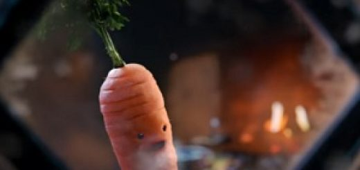 kevin_the_carrot