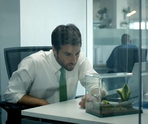 Volkswagen Golf Alltrack Commercial - Terrariums