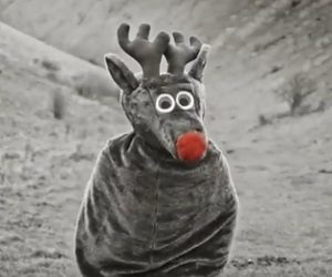 Santander Christmas Advert - Reindeer Costume