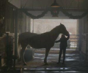 Purina Mills Christmas Commercial - Horse