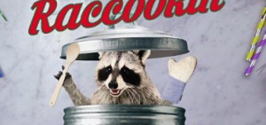 geico_raccoons_2017