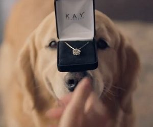 Kay Jewelers Valentine's Day Commercial