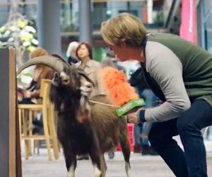 Klarmobil Werbung 2017 - Der Ziegenbock