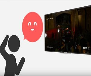 Sony Bravia Commercial 2017 - Voice Search