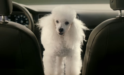 Volkswagen Golf Dog Commercial