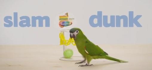 Subaru Australia Commercial - Parrot