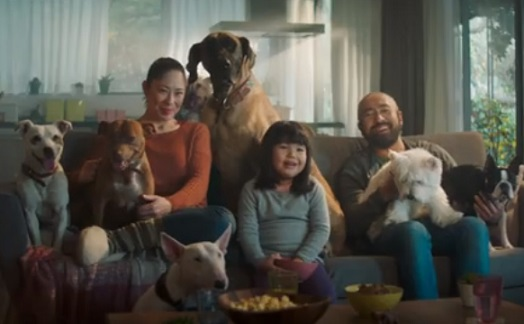 Wells Fargo Propel Card Commercial - Dogs Watching Lassie