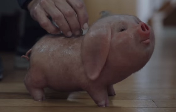 Santander Commercial - Piggy Bank Running the Marathon