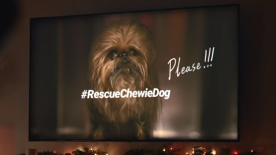 Samsung Chewbacca Dog Commercial - Rescue Chewie Dog
