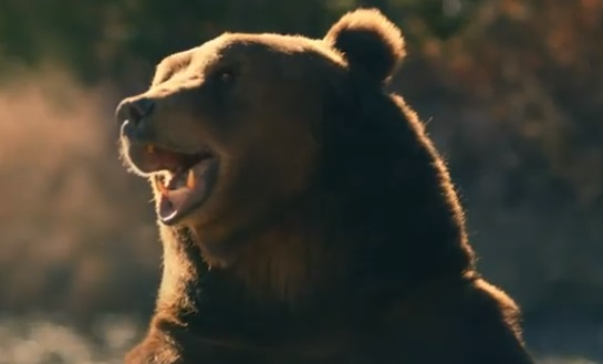 GMC Sierra Bear Commercial