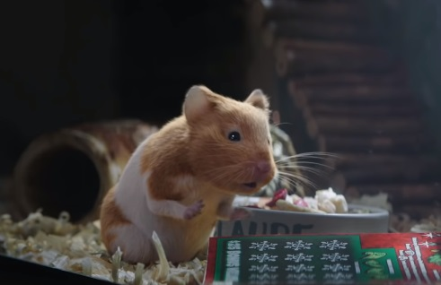 The Illinois Lottery Claude the Hamster Christmas Commercial