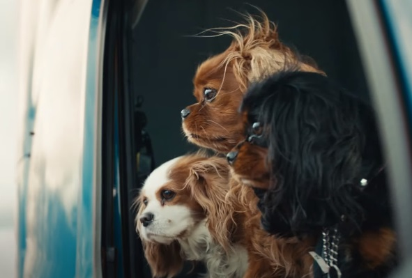 Volvo Trucks Happy Drivers, Happy Dogs Commercial