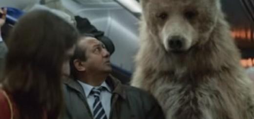 Compare the Meerkat Advert Song - Oleg's Dream - Frozen Toys