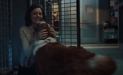 Adopt A Dog Commercial Song