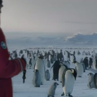 Samsung Penguins Commercial Song