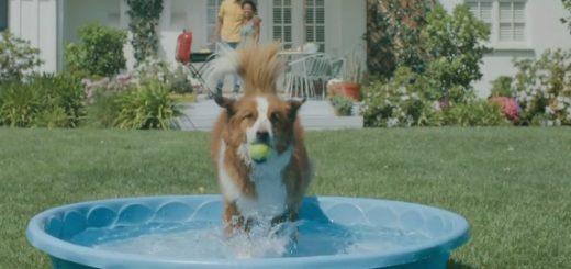 Rock Dog (2017 Movie) - Trailer Song